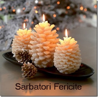 sarbatori_fericite1